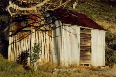 Kidmans - Farts 19930028 crp.jpg