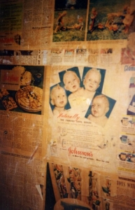 Old newspapers lining walls. Old Currango. - Farts 19940079.jpg