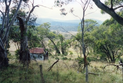 Harris Hut amongst the trees (photo by Peter) - Farts 19940094.jpg