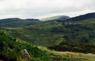 Around Gungartan Spur - Tin Hut hidden behind trees in centre. - 96-0011.jpg