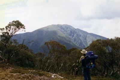 Mt.Feathertop from Diamantina Spur - 27.jpg