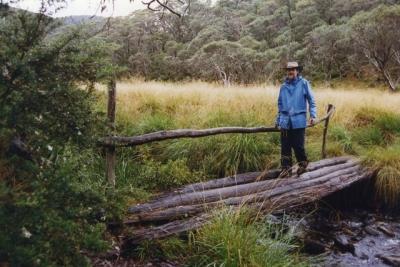 Near Dibbins Hut (Peter) - 52.jpg