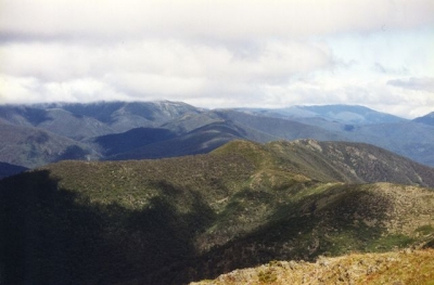 Looking North from Mt.Feathertop (Peter) - 6.jpg