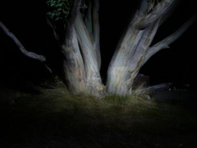 Painting with light. - P1080494.JPG