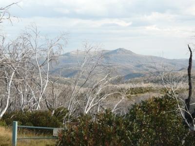Mt. Jagungal from Round Mountain. - P1010968.JPG