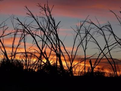 Sunrise next morning. - P1010969.JPG