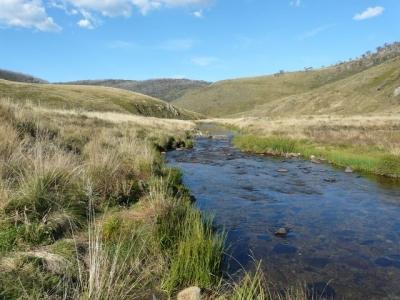 Looking downstream. - P1020027.JPG