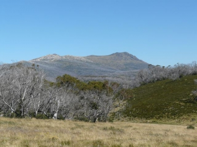Mt. Jagungal. - P1020116.JPG