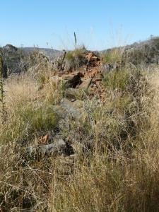Old chimney - P1020127.JPG