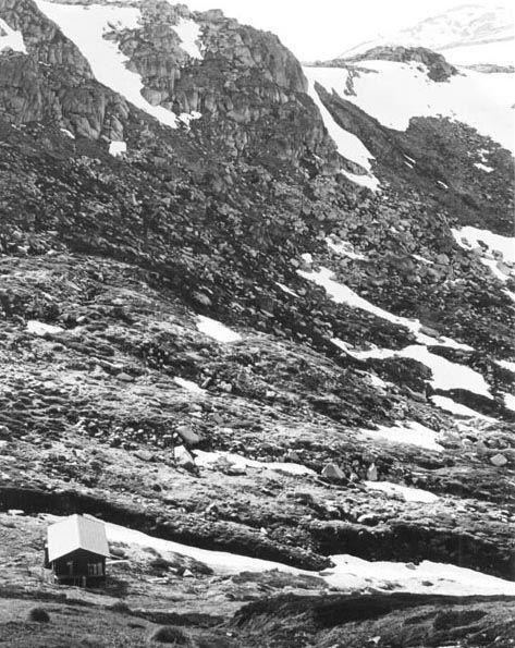 1977 Looking from Albina towards Mt Townsend - AlbinatowardsMtTownsendwebsize.jpg