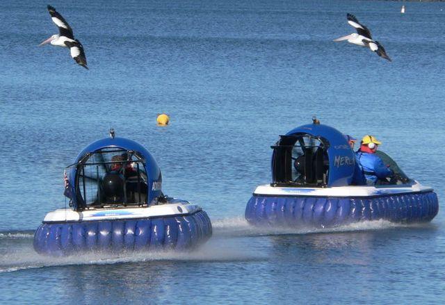 Floating on air - P1030839_cr.jpg