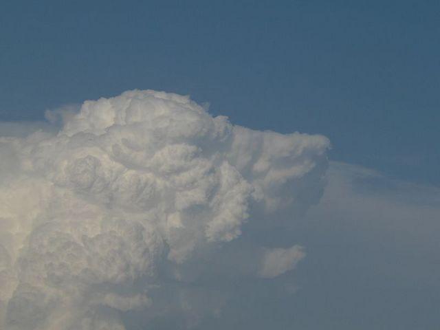 Cloud Dog - P1060259.jpg
