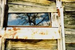 Harris Hut window (Car Windscreen) 1994 - Harris_Hut_Windscreen_window1994.jpg