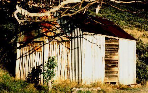Kidmans 1993 - Kidmans1993_2.jpg