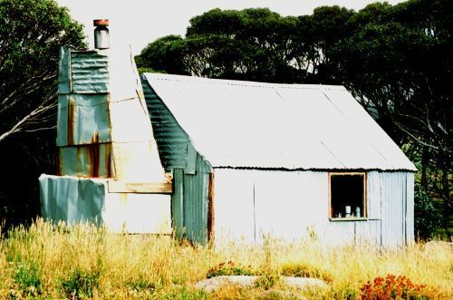 Tin 1996 - Tin1996.jpg